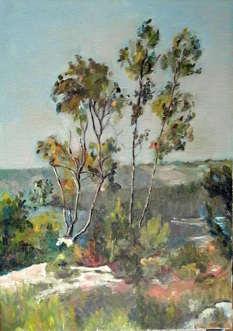 lubalem - Jerusalem forest.jpg
