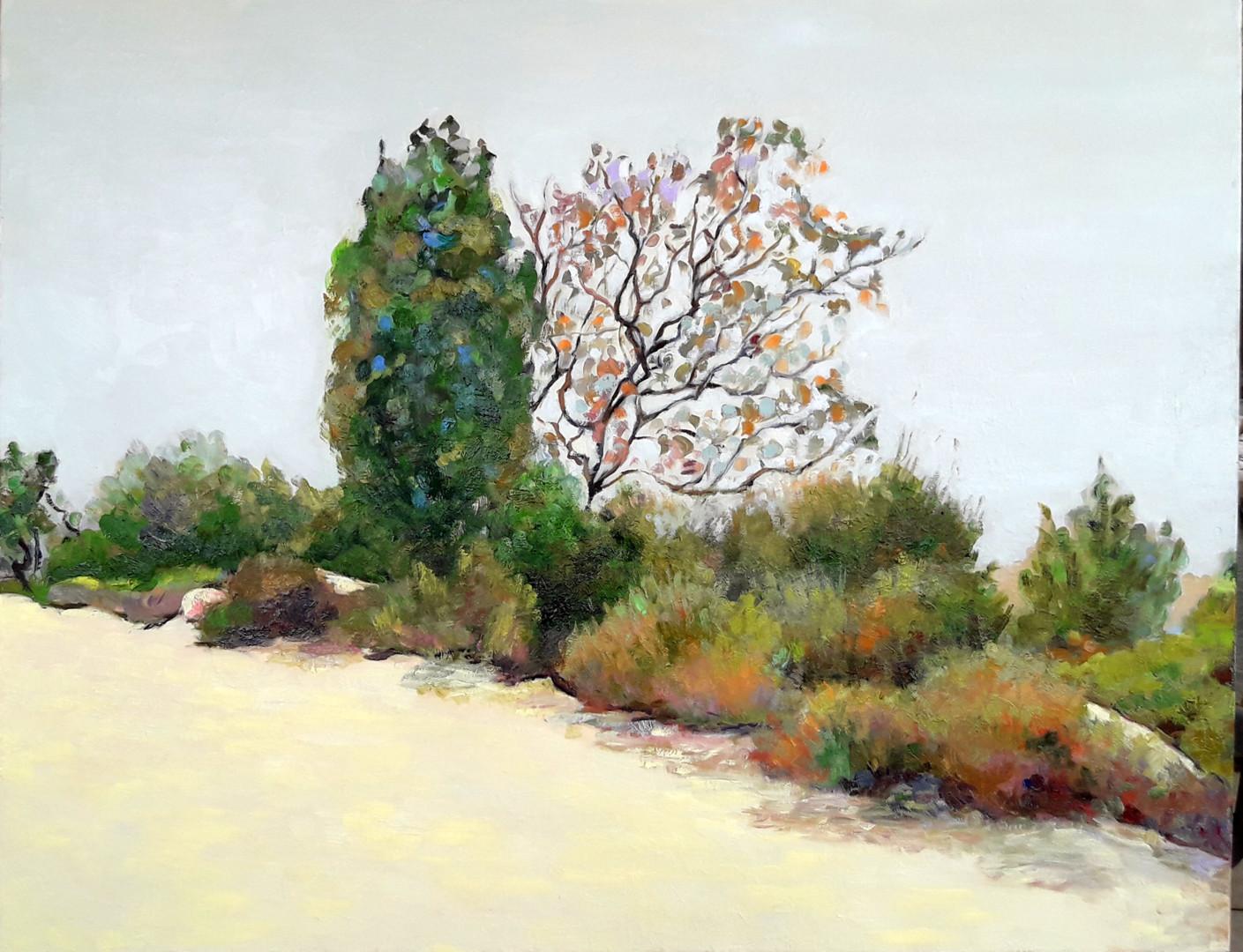 Lubalem - jerusalem-forest.jpg