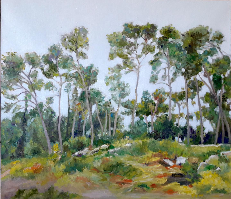 Lubalem - Landscape Israeli