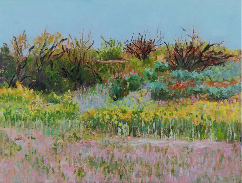Lubalem - Landscape israeli 4