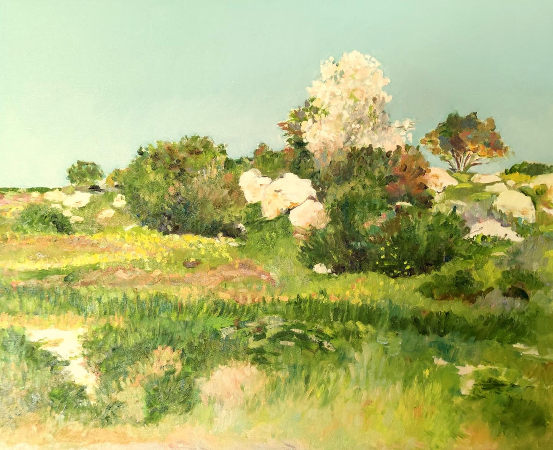 Lubalem - Landscape israeli 6
