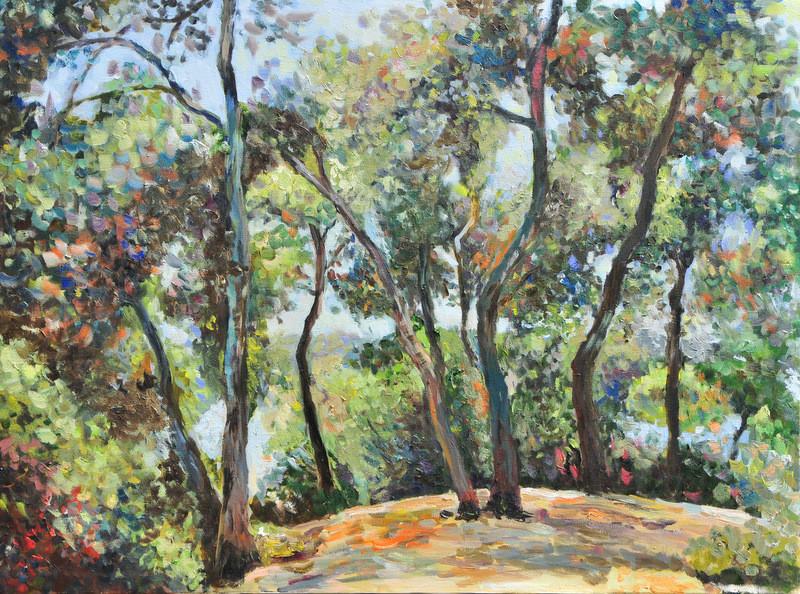 lubalem - Landscape-on the hill