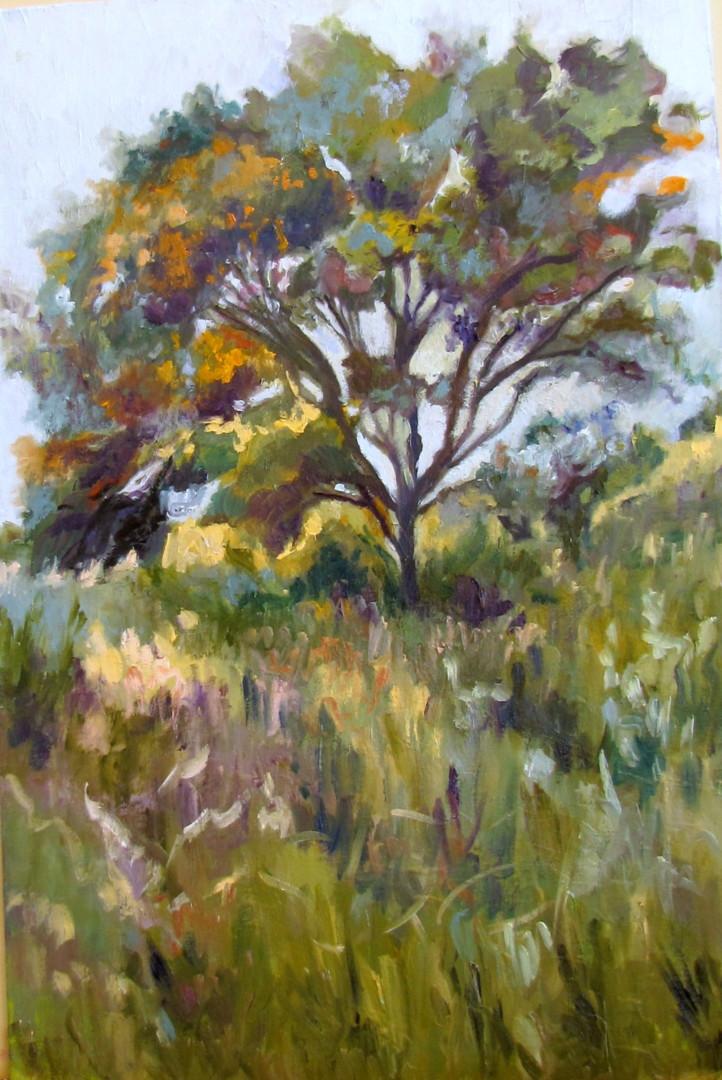 Lubalem - Landscape study