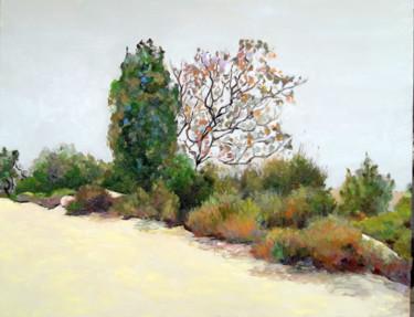 jerusalem-forest.jpg