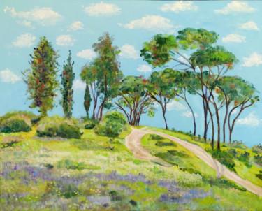 Landscape israeli3