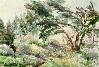 lubalem - The-wind.In vicinity of Latrun Israel